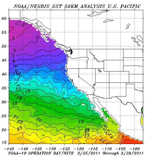 Surface Sea Temperatures Feb 2011